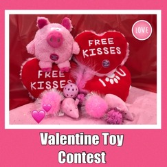 valentine contest 2 2