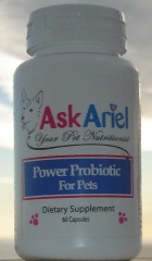 power probiotic