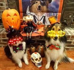 Laura Radosta Halloween Pic