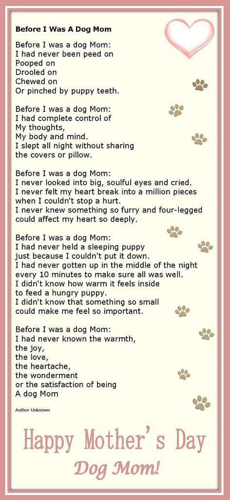 Dog mom poem